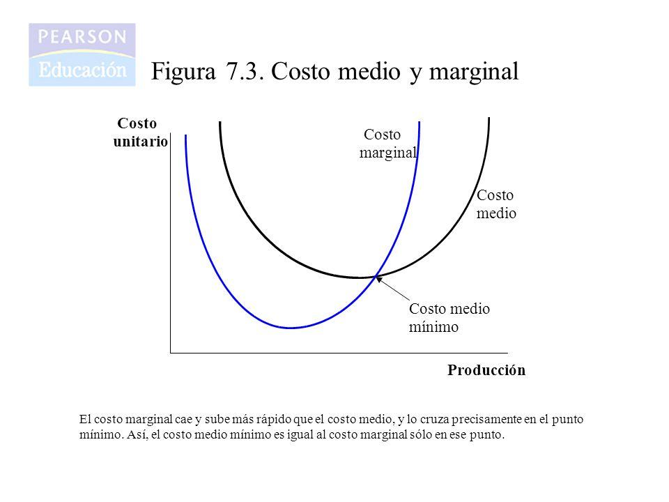 Figura 7.4.