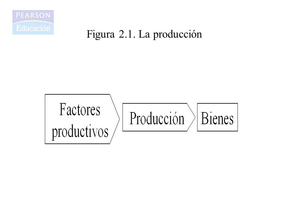 Figura 2.1. La producción
