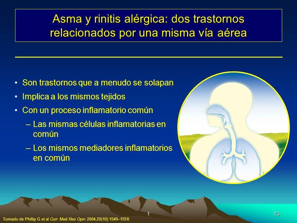 113 Asma y rinitis alérgica: dos trastornos relacionados por una misma vía aérea Son trastornos que a menudo se solapan Implica a los mismos tejidos C