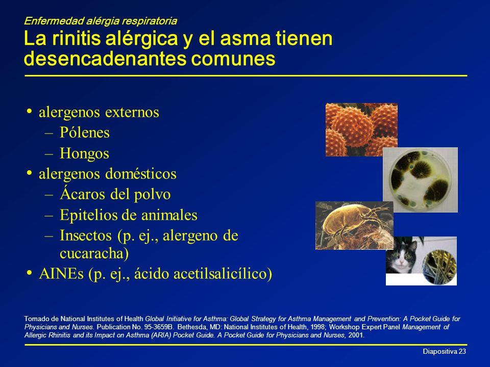 Diapositiva 23 alergenos externos –Pólenes –Hongos alergenos domésticos –Ácaros del polvo –Epitelios de animales –Insectos (p. ej., alergeno de cucara