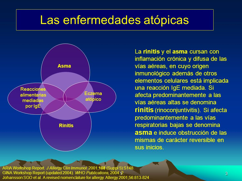 14 Mecanismo de la Reacción Inmune Moingeon P et al. Allergy 2006;61:151-165