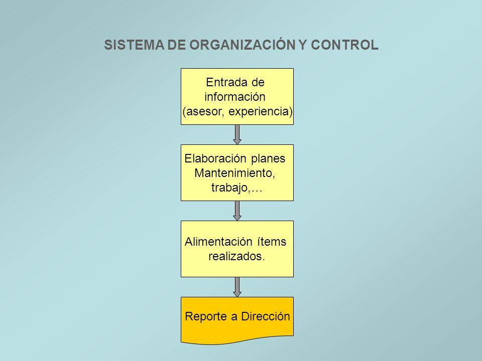 SISTEMA DE ORGANIZACIÓN Y CONTROL Entrada de información (asesor, experiencia) Elaboración planes Mantenimiento, trabajo,… Alimentación ítems realizad
