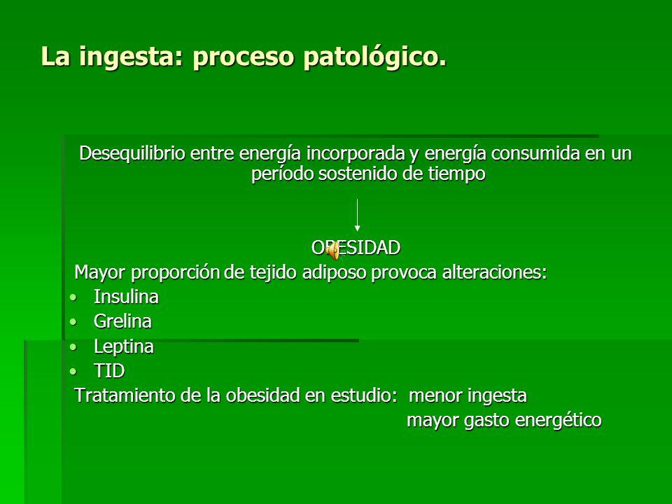 La ingesta: regulación fisiológica. B. GASTO ENERGÉTICO ENERGIA procedente de alimentos: nutrientes ATP ENERGIA procedente de alimentos: nutrientes AT
