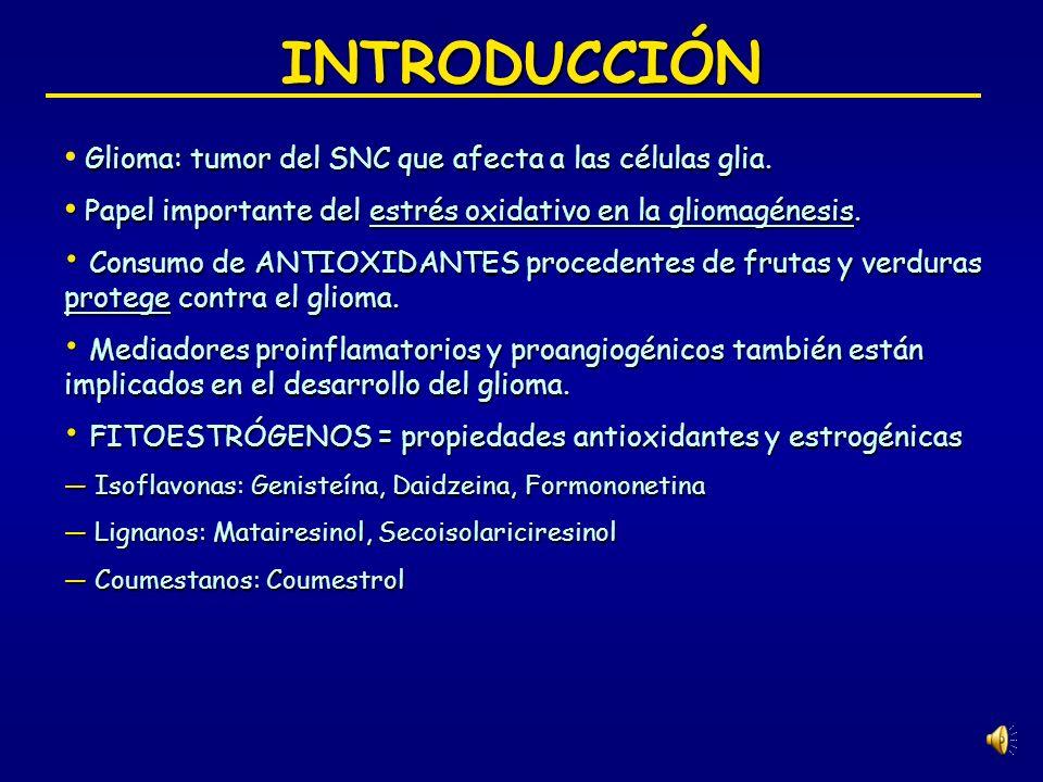 INTRODUCCIÓN Glioma: tumor del SNC que afecta a las células glia.