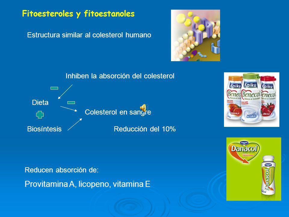 Fitoesteroles y fitoestanoles Estructura similar al colesterol humano Inhiben la absorción del colesterol Dieta Biosíntesis Colesterol en sangre Reducción del 10% Reducen absorción de: Provitamina A, licopeno, vitamina E