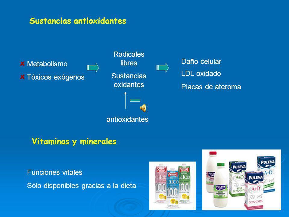 Sustancias antioxidantes Vitaminas y minerales Metabolismo Tóxicos exógenos Radicales libres Sustancias oxidantes Daño celular LDL oxidado Placas de ateroma antioxidantes Funciones vitales Sólo disponibles gracias a la dieta