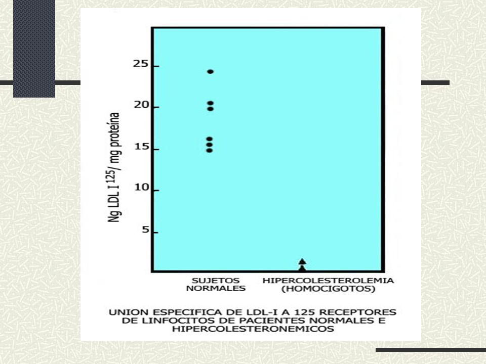 PuntosProbabilidad mutación 8 puntos Heterocigoto seguro 6-7 puntosHeterocigoto probable 3-5 puntosHeterocigoto posible