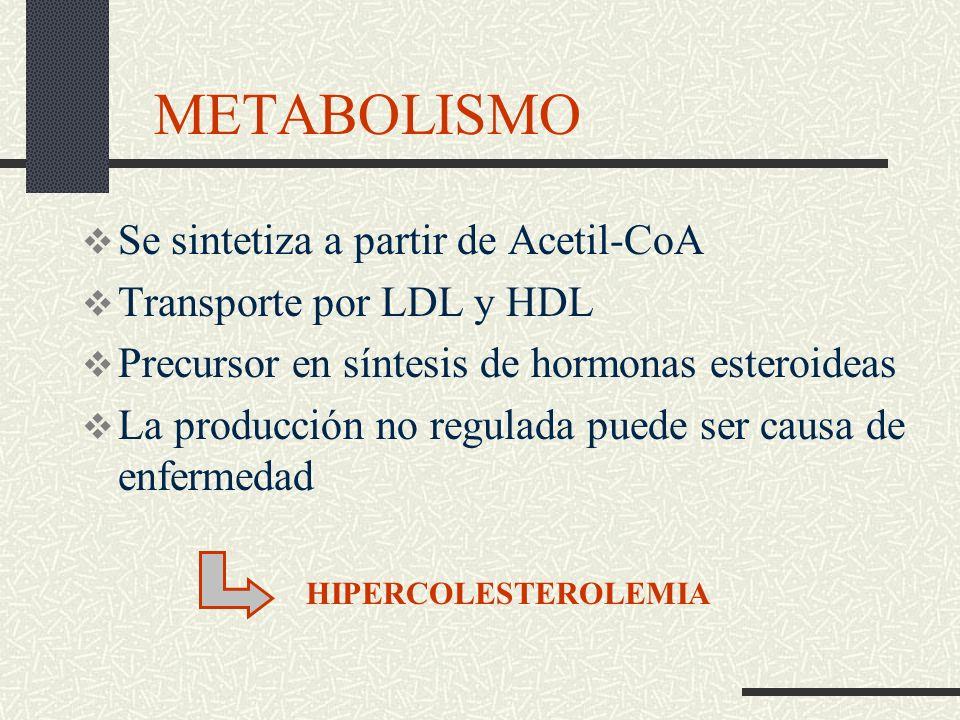 ¿QUÉ ES EL COLESTEROL? Grasas del organismo. COLESTEROL - Síntesis de hormonas - Producción energía - Estructura de membranas