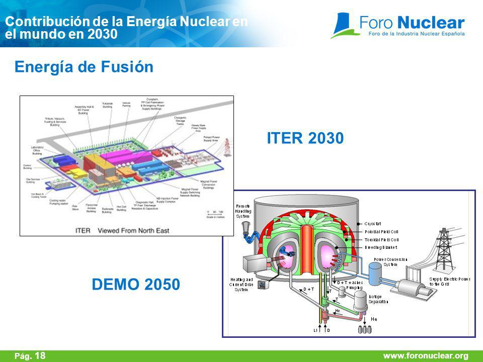 www.foronuclear.org Energía de Fusión Contribución de la Energía Nuclear en el mundo en 2030 ITER 2030 DEMO 2050 www.foronuclear.org Pág. 18