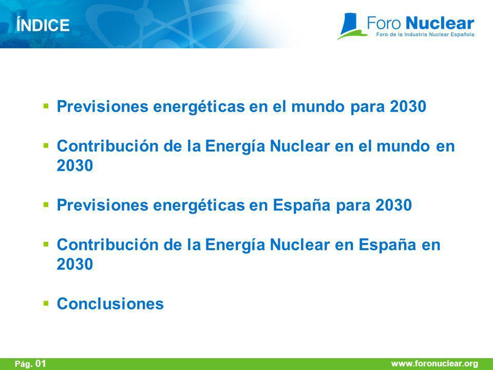 www.foronuclear.org ÍNDICE Previsiones energéticas en el mundo para 2030 Contribución de la Energía Nuclear en el mundo en 2030 Previsiones energética