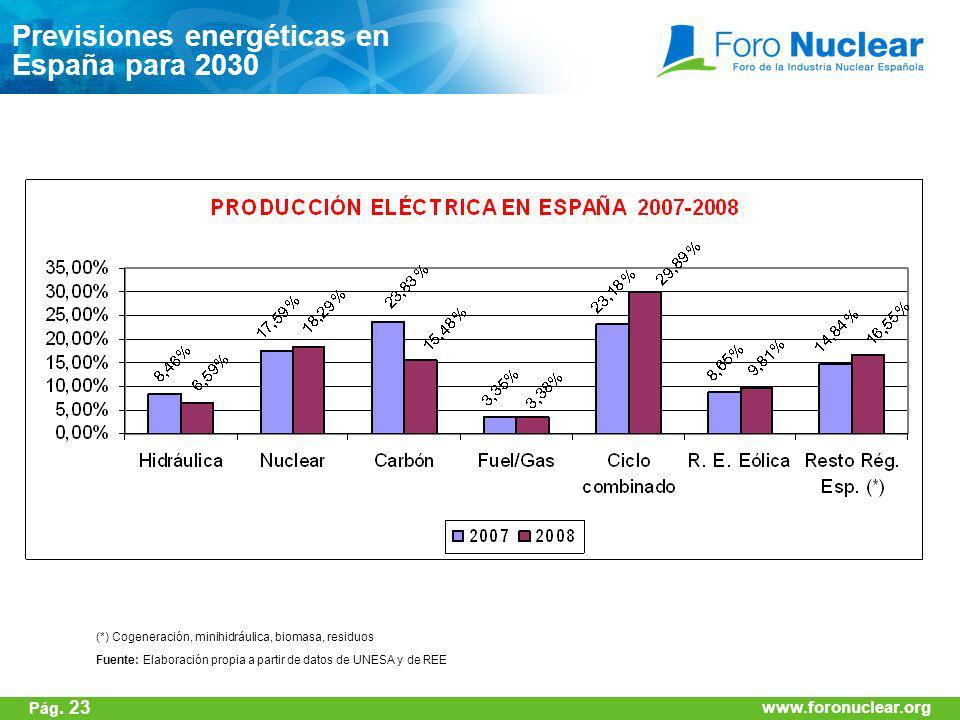 www.foronuclear.org (*) Cogeneración, minihidráulica, biomasa, residuos Fuente: Elaboración propia a partir de datos de UNESA y de REE Previsiones ene