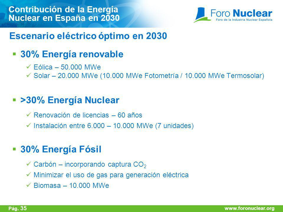 www.foronuclear.org 30% Energía renovable Eólica – 50.000 MWe Solar – 20.000 MWe (10.000 MWe Fotometría / 10.000 MWe Termosolar) >30% Energía Nuclear