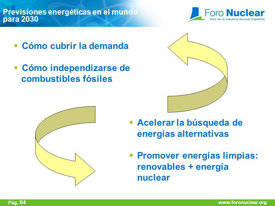 www.foronuclear.org Previsiones energéticas en el mundo para 2030 www.foronuclear.org Pág. 04 Cómo cubrir la demanda Cómo independizarse de combustibl