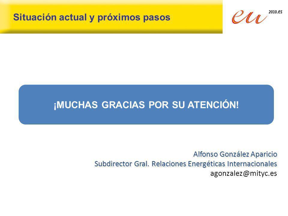 Situación actual y próximos pasos ¡MUCHAS GRACIAS POR SU ATENCIÓN! Alfonso González Aparicio Subdirector Gral. Relaciones Energéticas Internacionales