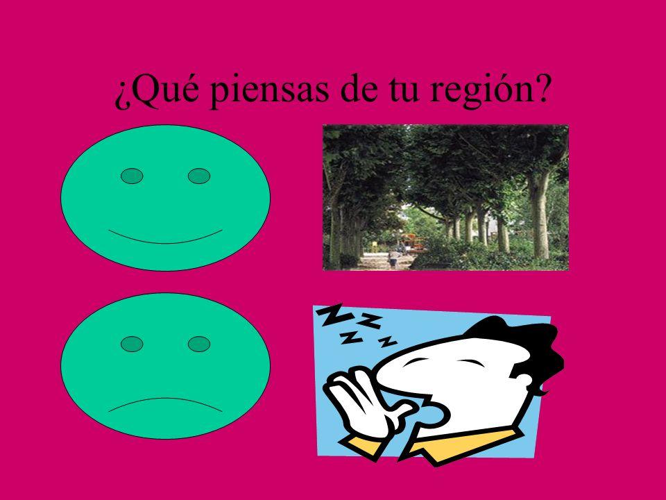 ¿Qué piensas de tu región?