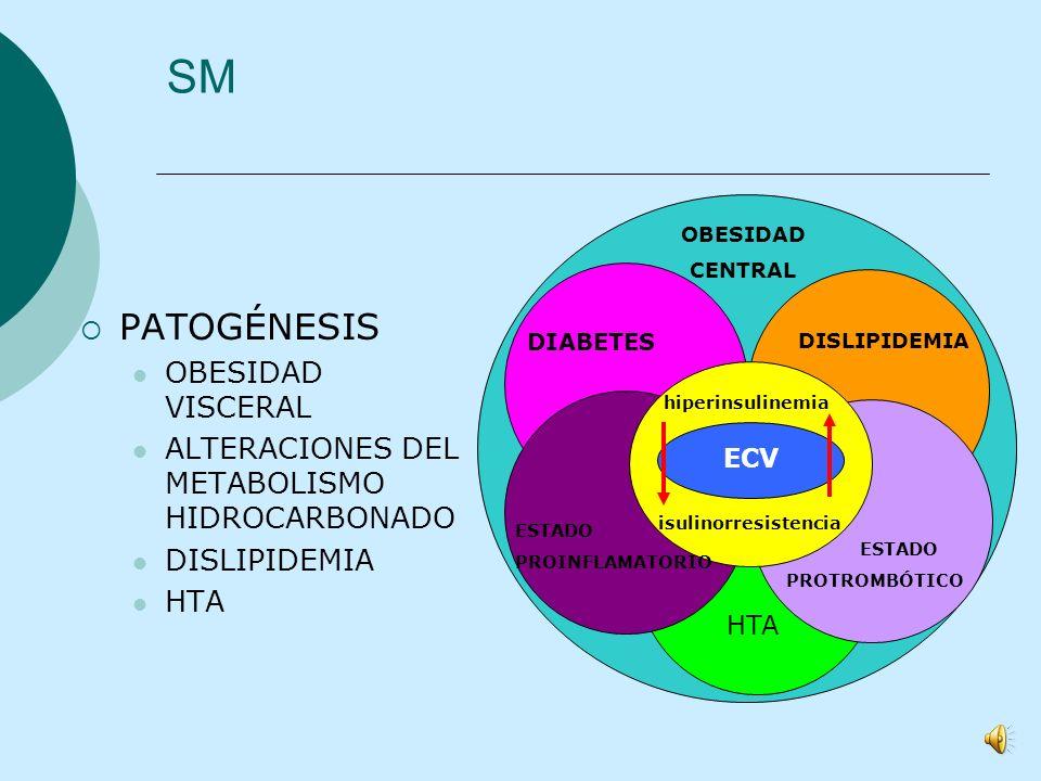 SedentarismoHiperalimentación Expresión genética alterada SM J.E.Camplillo, 2006 Genotipo ahorrador