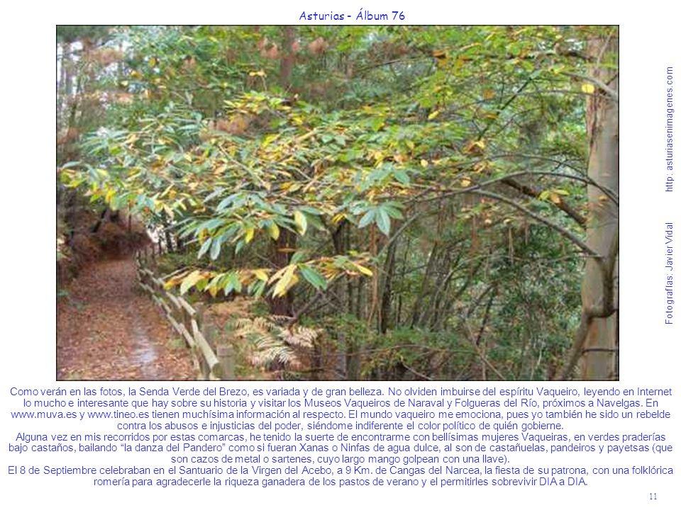 11 Asturias - Álbum 76 Fotografías: Javier Vidal http: asturiasenimagenes.com Como verán en las fotos, la Senda Verde del Brezo, es variada y de gran