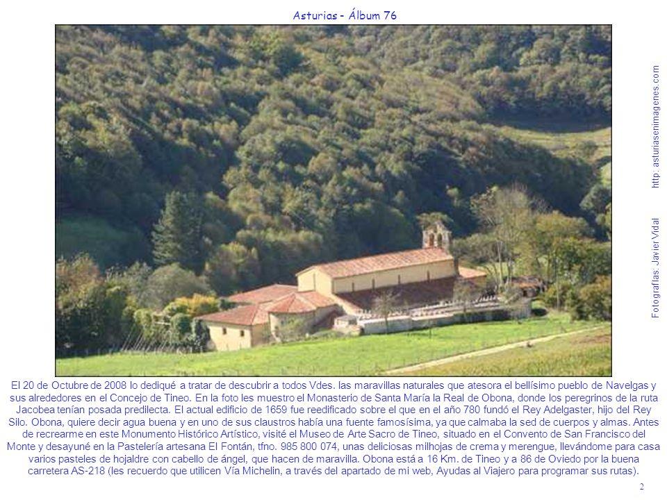 2 Asturias - Álbum 76 Fotografías: Javier Vidal http: asturiasenimagenes.com El 20 de Octubre de 2008 lo dediqué a tratar de descubrir a todos Vdes. l