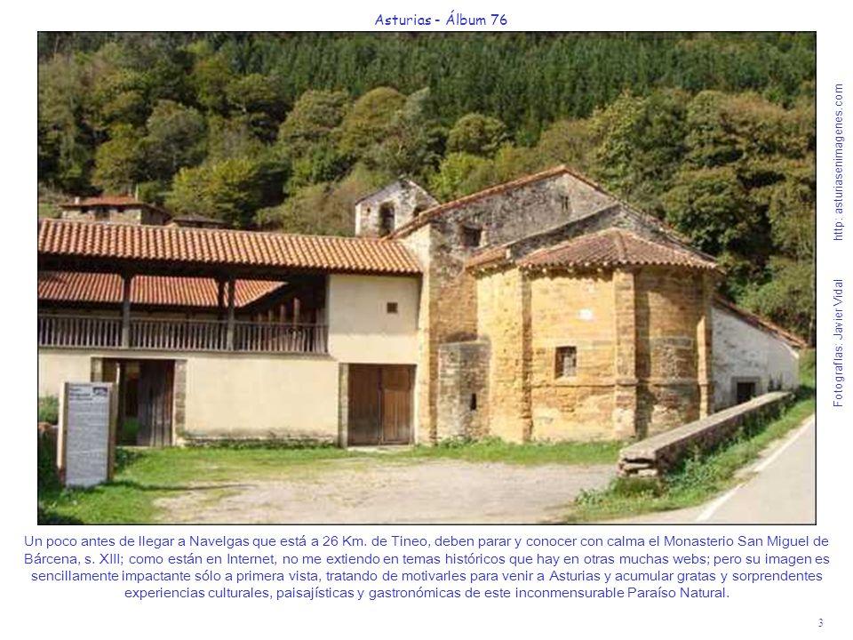 3 Asturias - Álbum 76 Fotografías: Javier Vidal http: asturiasenimagenes.com Un poco antes de llegar a Navelgas que está a 26 Km. de Tineo, deben para