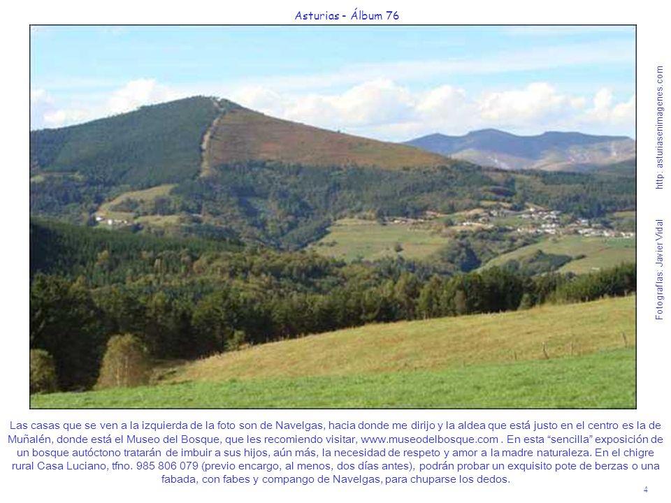 4 Asturias - Álbum 76 Fotografías: Javier Vidal http: asturiasenimagenes.com Las casas que se ven a la izquierda de la foto son de Navelgas, hacia don