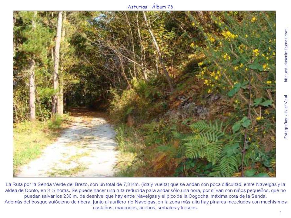7 Asturias - Álbum 76 Fotografías: Javier Vidal http: asturiasenimagenes.com La Ruta por la Senda Verde del Brezo, son un total de 7,3 Km. (ida y vuel