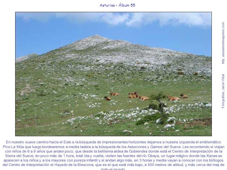 3 Asturias - Álbum 55 Fotografías: Javier Vidal http: asturiasenimagenes.com En nuestro suave camino hacia el Este a la búsqueda de impresionantes hor
