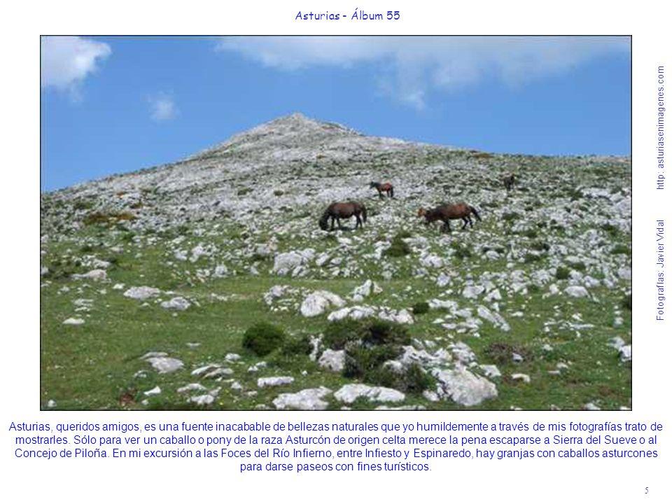 5 Asturias - Álbum 55 Fotografías: Javier Vidal http: asturiasenimagenes.com Asturias, queridos amigos, es una fuente inacabable de bellezas naturales