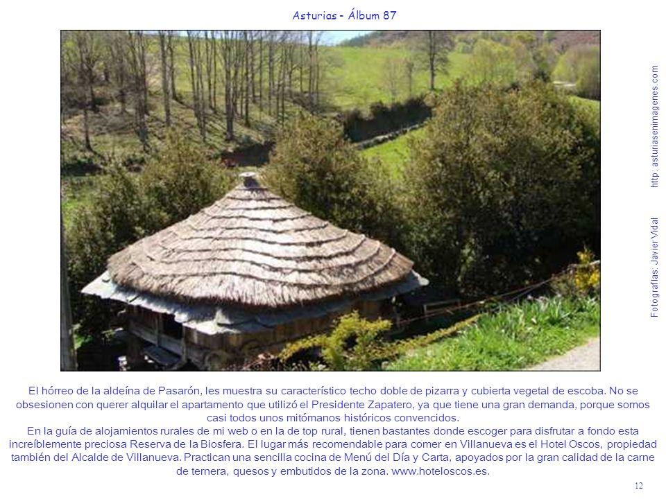 12 Asturias - Álbum 87 Fotografías: Javier Vidal http: asturiasenimagenes.com El hórreo de la aldeína de Pasarón, les muestra su característico techo
