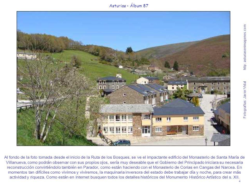 4 Asturias - Álbum 87 Fotografías: Javier Vidal http: asturiasenimagenes.com Al fondo de la foto tomada desde el inicio de la Ruta de los Bosques, se