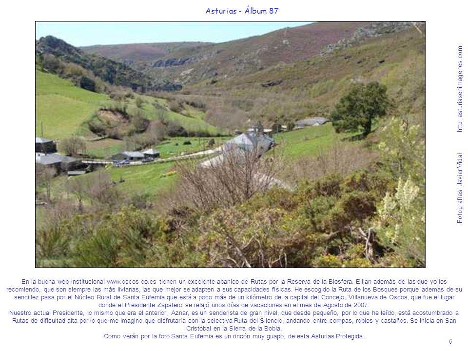 6 Asturias - Álbum 87 Fotografías: Javier Vidal http: asturiasenimagenes.com En la buena web institucional www.oscos-eo.es tienen un excelente abanico