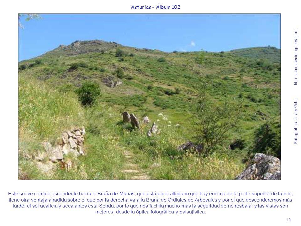 10 Asturias - Álbum 102 Fotografías: Javier Vidal http: asturiasenimagenes.com Este suave camino ascendente hacia la Braña de Murias, que está en el a