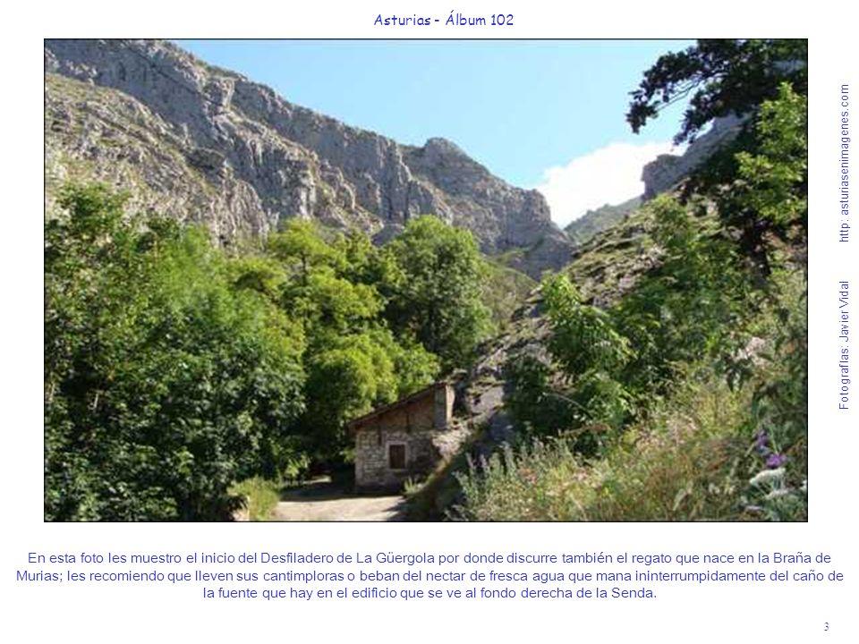 3 Asturias - Álbum 102 Fotografías: Javier Vidal http: asturiasenimagenes.com En esta foto les muestro el inicio del Desfiladero de La Güergola por do