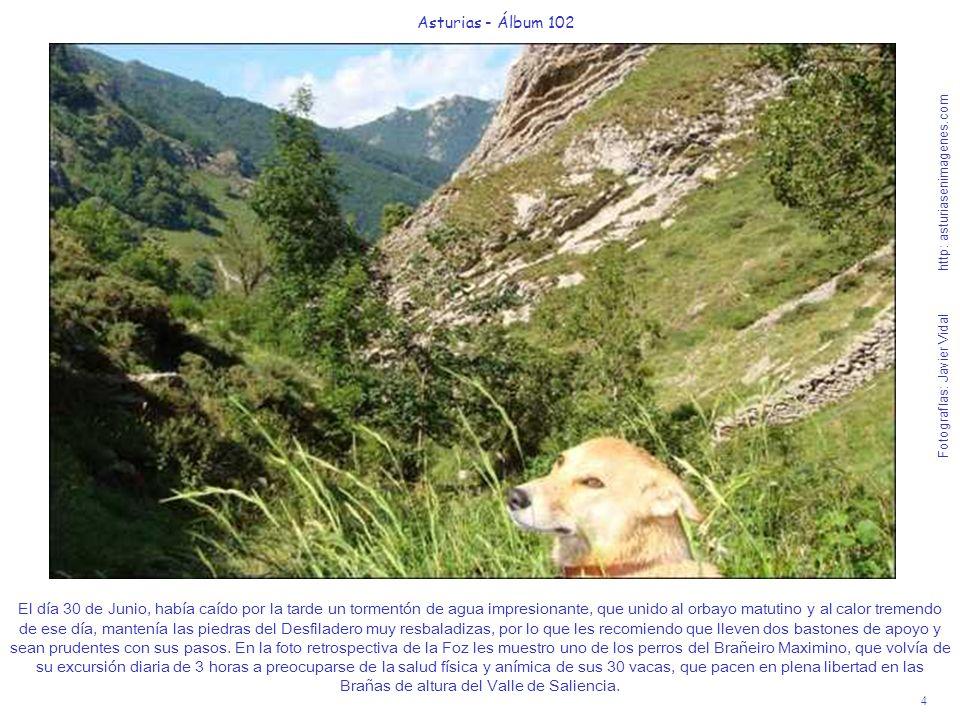 4 Asturias - Álbum 102 Fotografías: Javier Vidal http: asturiasenimagenes.com El día 30 de Junio, había caído por la tarde un tormentón de agua impres