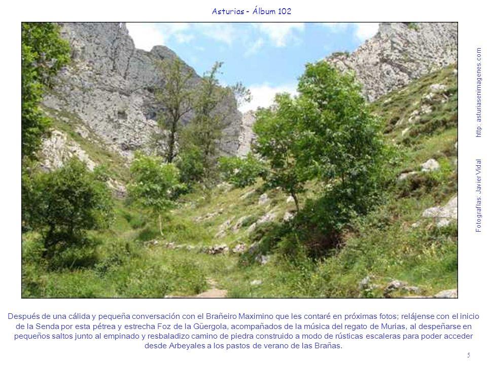 5 Asturias - Álbum 102 Fotografías: Javier Vidal http: asturiasenimagenes.com Después de una cálida y pequeña conversación con el Brañeiro Maximino qu