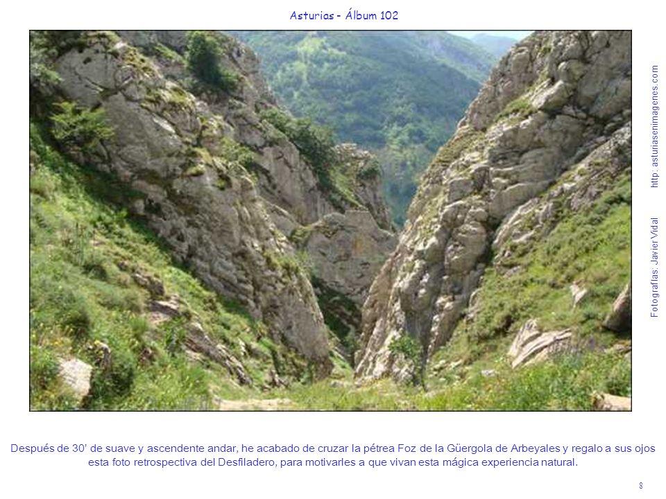 8 Asturias - Álbum 102 Fotografías: Javier Vidal http: asturiasenimagenes.com Después de 30 de suave y ascendente andar, he acabado de cruzar la pétre