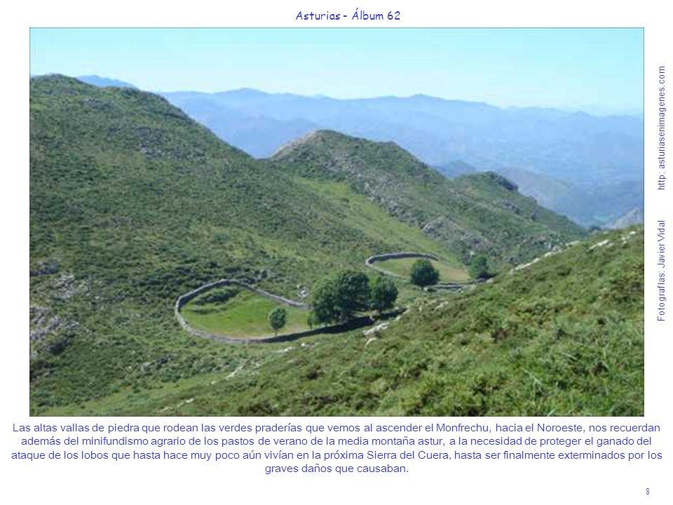 8 Asturias - Álbum 62 Fotografías: Javier Vidal http: asturiasenimagenes.com Las altas vallas de piedra que rodean las verdes praderías que vemos al a