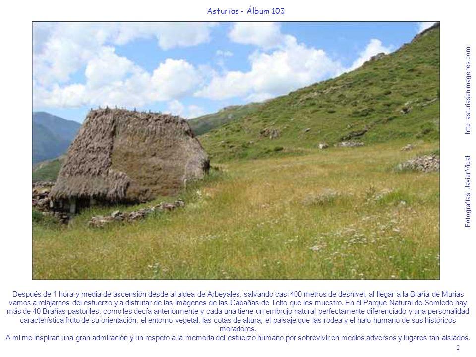 3 Asturias - Álbum 103 Fotografías: Javier Vidal http: asturiasenimagenes.com Espero que haya sabido recoger en esta imagen, la salvaje belleza de la Braña de Murias y de sus praderías con la hierba en plena sazón.