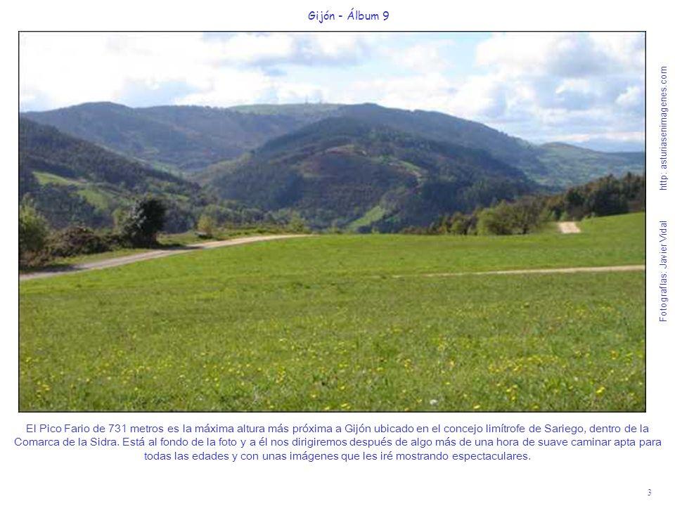 3 Gijón - Álbum 9 Fotografías: Javier Vidal http: asturiasenimagenes.com El Pico Fario de 731 metros es la máxima altura más próxima a Gijón ubicado e