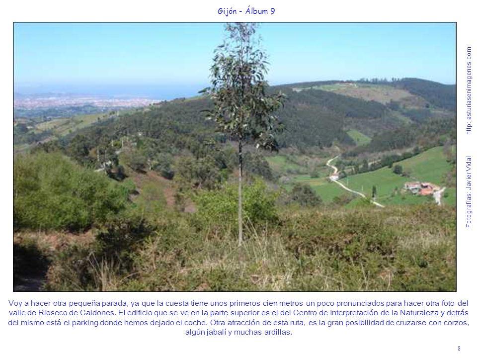 9 Gijón - Álbum 9 Fotografías: Javier Vidal http: asturiasenimagenes.com Hice las fotos de esta ruta en los primeros días de Abril de 2008, recién pasada una época de vivificantes y necesarias lluvias y nieve, que nos va a decorar los picos de las innumerables montañas que podemos apreciar mejor desde el Pico Fario de 731 m.