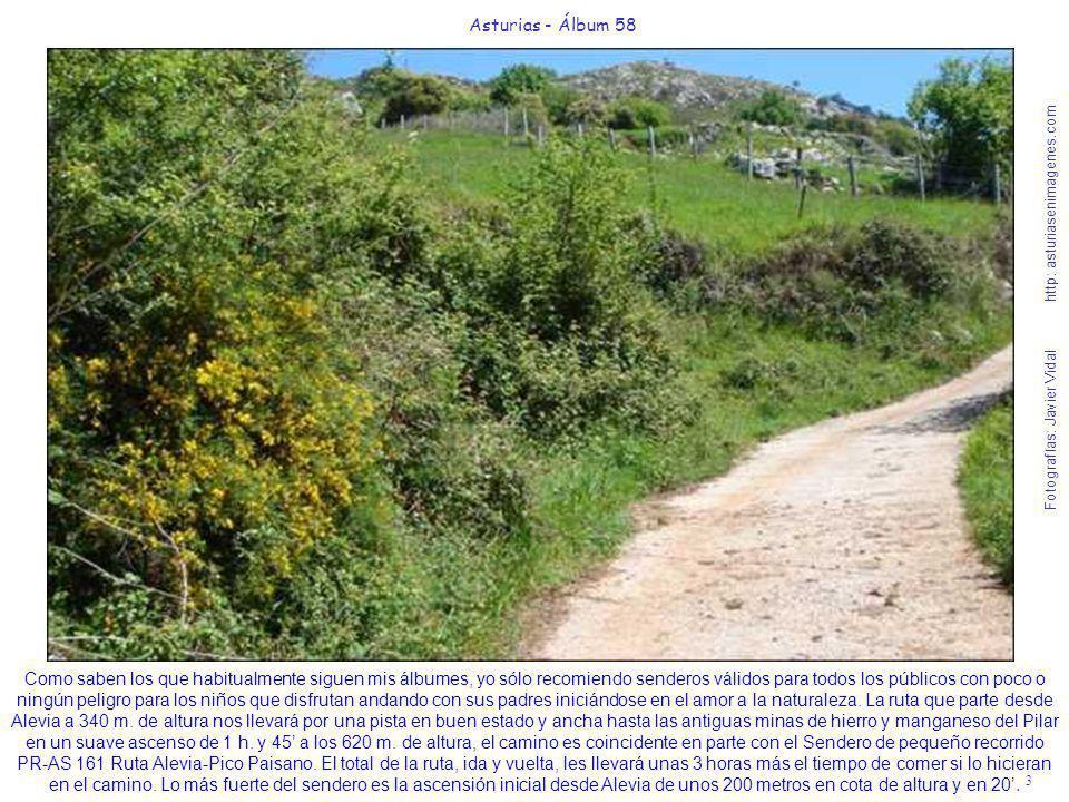 4 Asturias - Álbum 58 Fotografías: Javier Vidal http: asturiasenimagenes.com Esta cabaña con una vaca cerca de ella está situada al Suroeste del Pico Llueres en la vertiente sobre el río Cares y era por donde discurría el camino, ahora impracticable, que aún figura indebidamente en el plano de la Senda PR-AS 191.