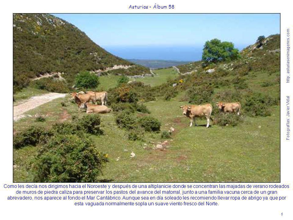6 Asturias - Álbum 58 Fotografías: Javier Vidal http: asturiasenimagenes.com Como les decía nos dirigimos hacia el Noroeste y después de una altiplani