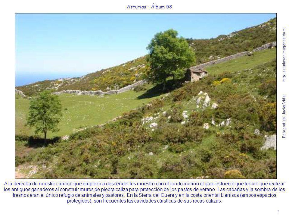7 Asturias - Álbum 58 Fotografías: Javier Vidal http: asturiasenimagenes.com A la derecha de nuestro camino que empieza a descender les muestro con el