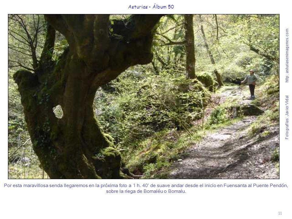 11 Asturias - Álbum 50 Fotografías: Javier Vidal http: asturiasenimagenes.com Por esta maravillosa senda llegaremos en la próxima foto a 1 h. 40 de su