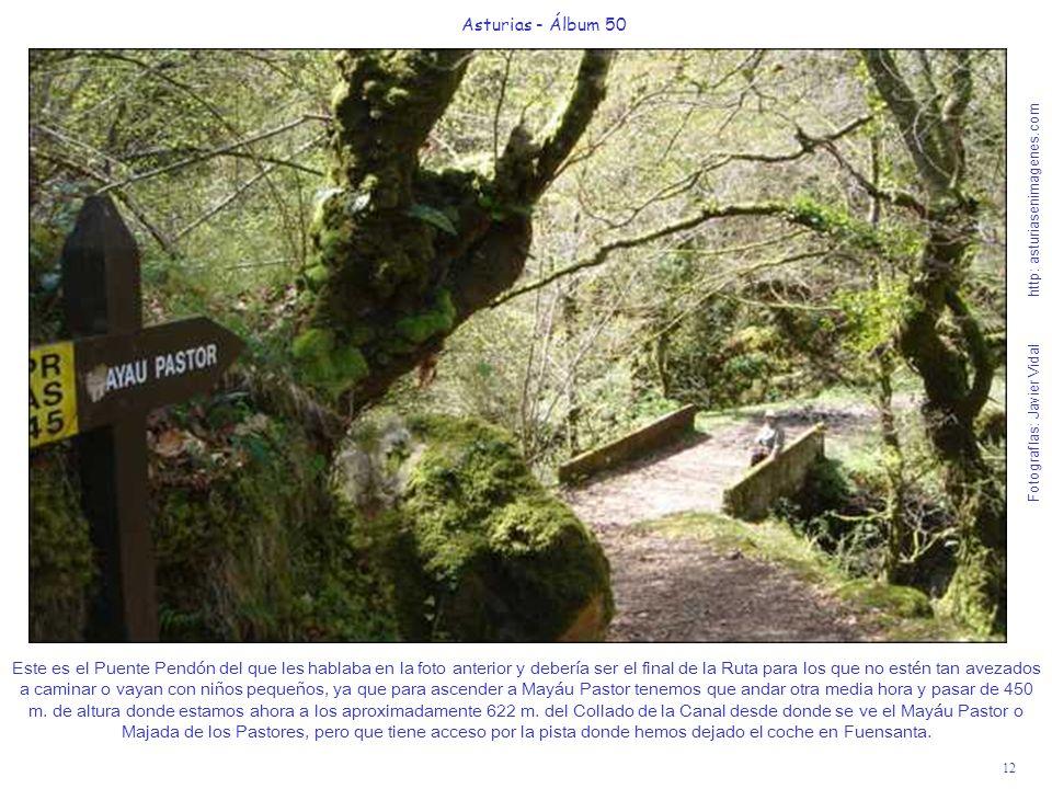 12 Asturias - Álbum 50 Fotografías: Javier Vidal http: asturiasenimagenes.com Este es el Puente Pendón del que les hablaba en la foto anterior y deber