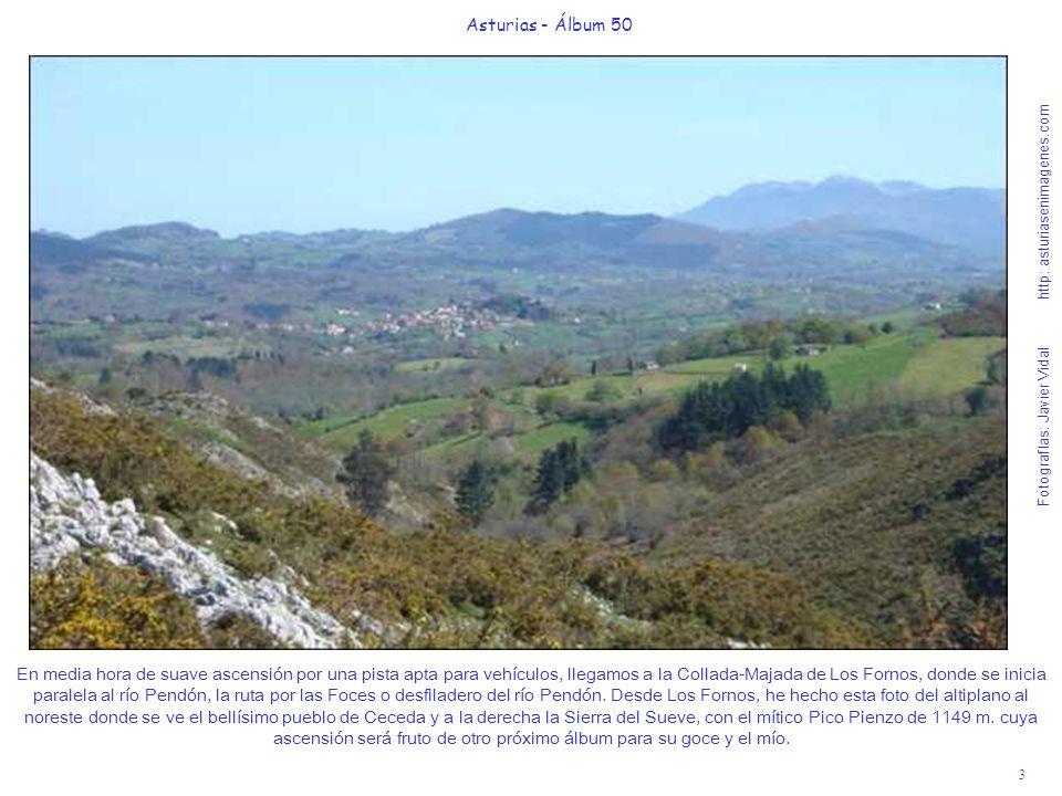 4 Asturias - Álbum 50 Fotografías: Javier Vidal http: asturiasenimagenes.com Por esta suave senda apta para todos los públicos (que fue construida para albergar la traída de agua a Nava, Villa de la Sidra) viviremos una jornada de Naturaleza memorable.