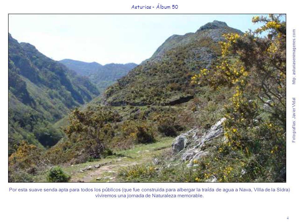 5 Asturias - Álbum 50 Fotografías: Javier Vidal http: asturiasenimagenes.com Como se aprecia en la foto, la senda es suficiente ancha y poco peligrosa a pesar del desnivel al fondo por donde discurre el río Pendón.