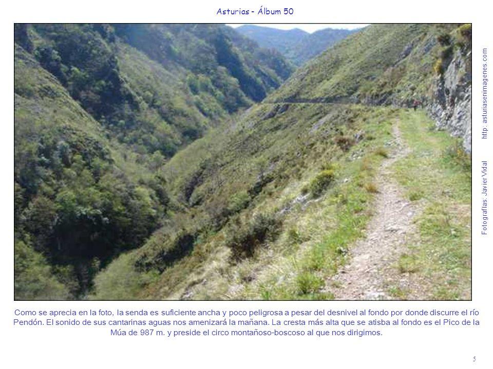 5 Asturias - Álbum 50 Fotografías: Javier Vidal http: asturiasenimagenes.com Como se aprecia en la foto, la senda es suficiente ancha y poco peligrosa