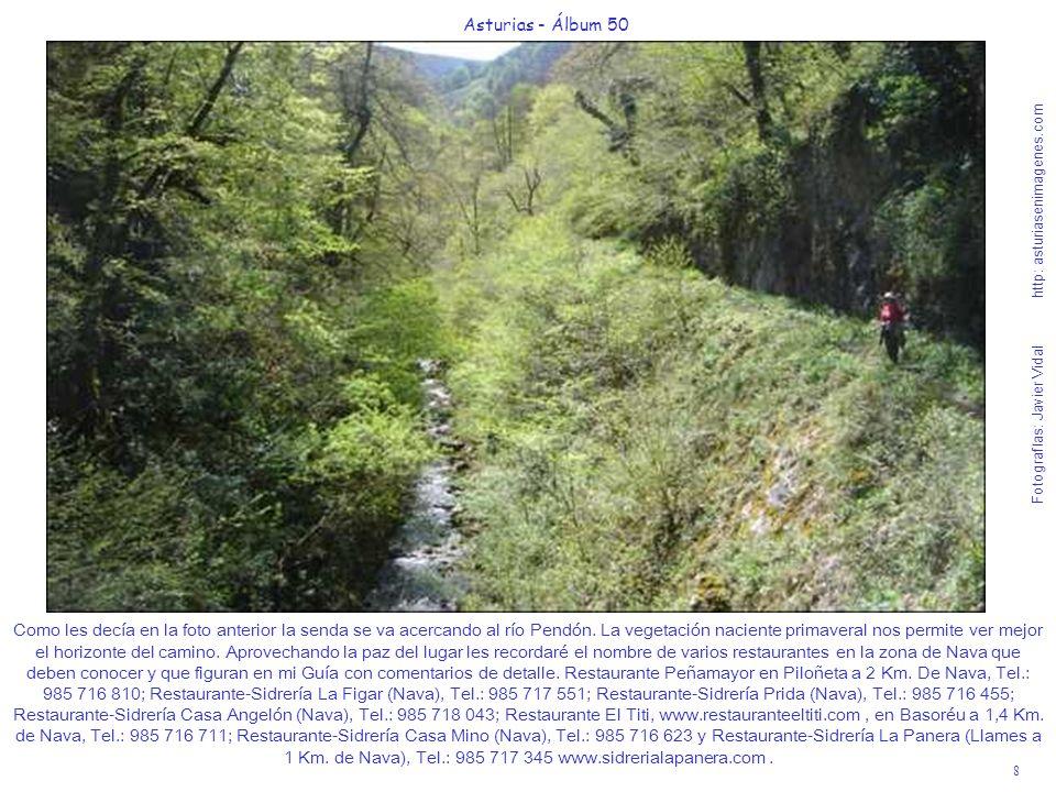 8 Asturias - Álbum 50 Fotografías: Javier Vidal http: asturiasenimagenes.com Como les decía en la foto anterior la senda se va acercando al río Pendón