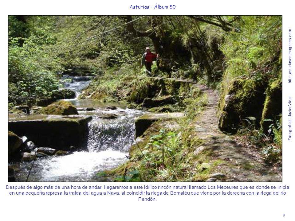 10 Asturias - Álbum 50 Fotografías: Javier Vidal http: asturiasenimagenes.com Cruzando el puente Los Meceures, seguimos la senda rodeados de hayas, robles, avellanos y abedules e iremos escogiendo el rincón para comer el bocata y relajarnos en este Paraíso Natural.
