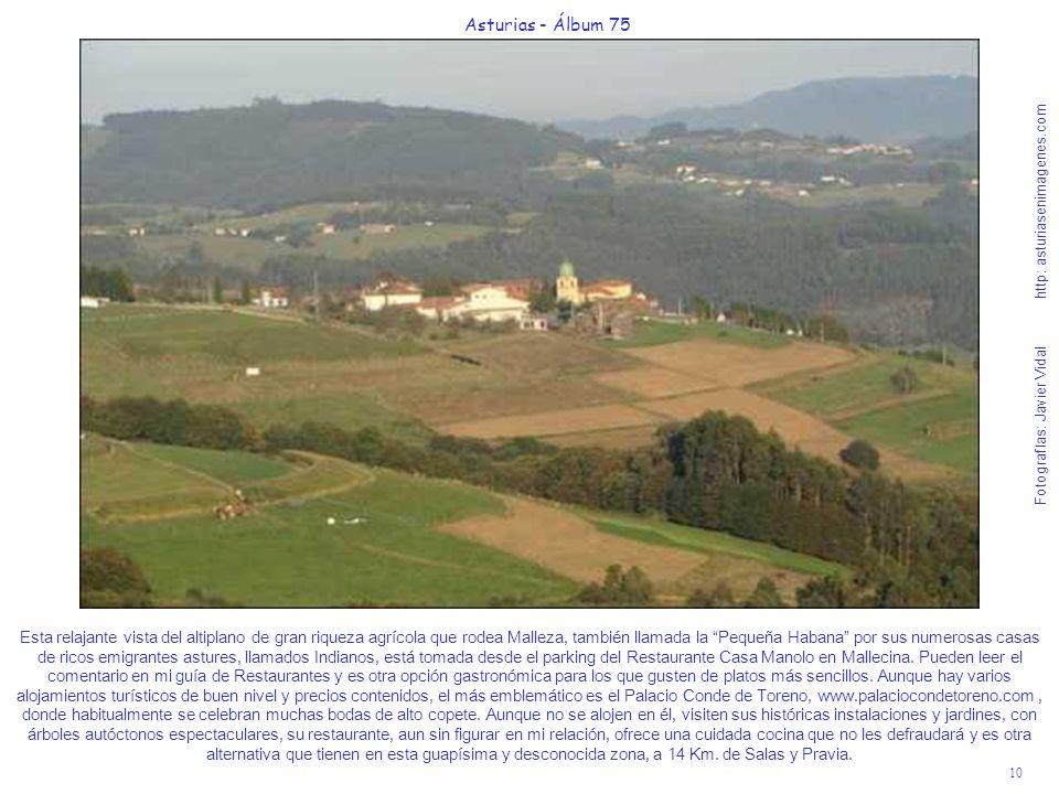 10 Asturias - Álbum 75 Fotografías: Javier Vidal http: asturiasenimagenes.com Esta relajante vista del altiplano de gran riqueza agrícola que rodea Ma